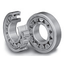 200 Series Cylindrical Roller Bearings