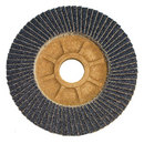 Flap Discs
