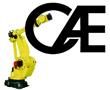 Computer Age Engineering Company Logo