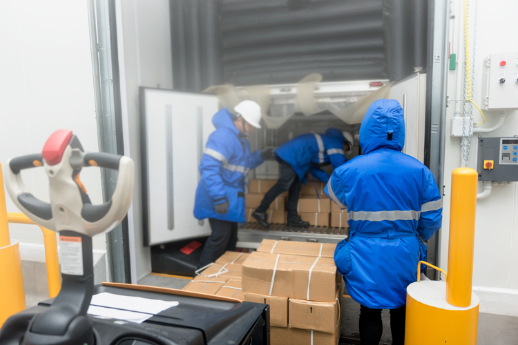 How Do Cold Chain Logistics Impact Global Biopharmaceutical Distribution?
