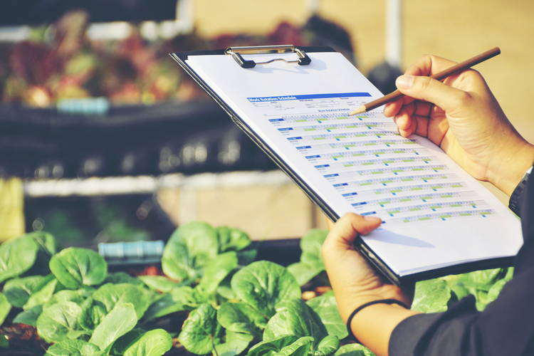 How the Food Industry Can Improve Quality Control