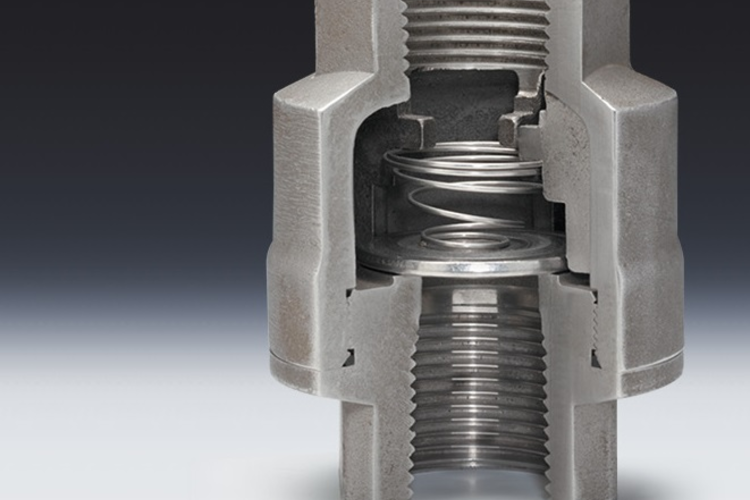 Threaded check valve