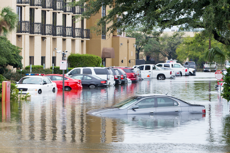 Cars Submerged in Hurricane Harvey Floodwaters
