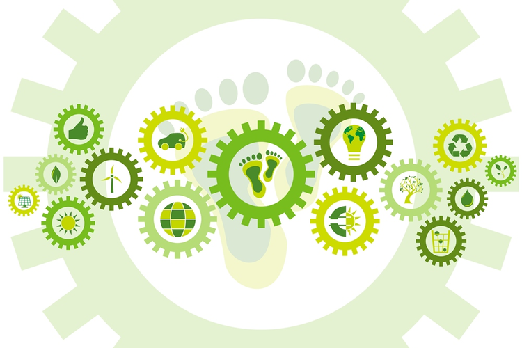 3 Reasons Why Supply Chain Sustainability Makes Business Sense