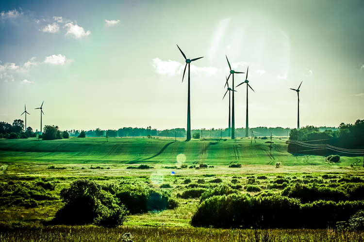 Predicting the 4 Most Powerful Renewable Energy Trends of 2019