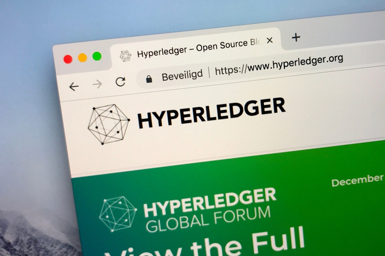 Hyperledger website.