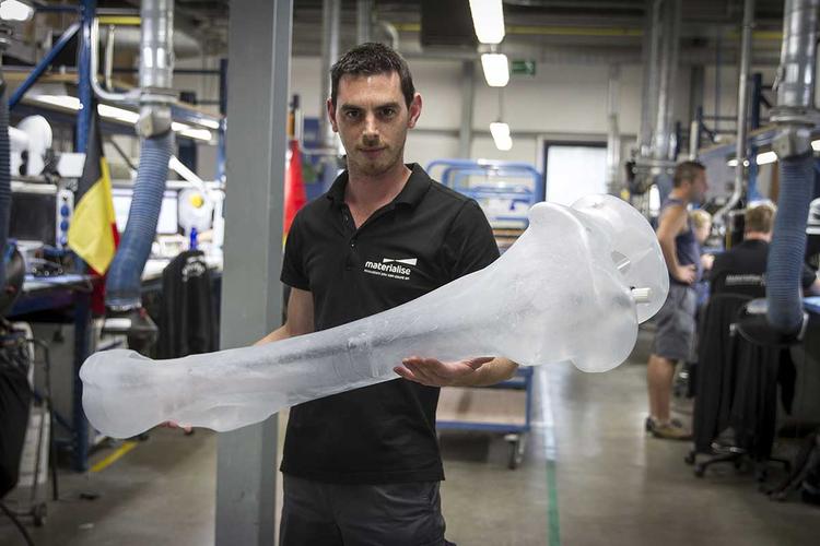 Mammoth 3D-Printing Job
