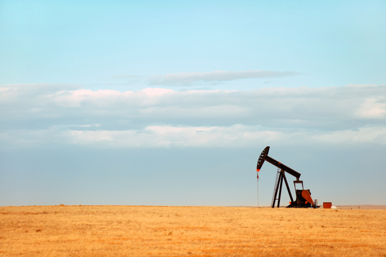 Oil Producers Had Best Year Since 2013