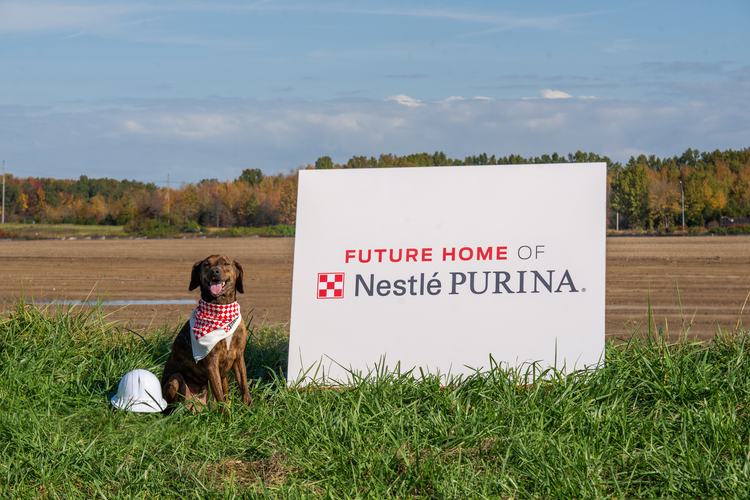Lupe, a Plott Hound-Dachshund mix, poses in front of the future home of Nestlé Purina PetCare's 23rd U.S. manufacturing facility, slated to begin operating in Williamsburg Township, Ohio in 2023.