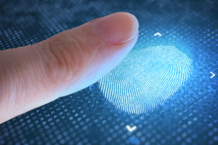 Fingerprint being scanned