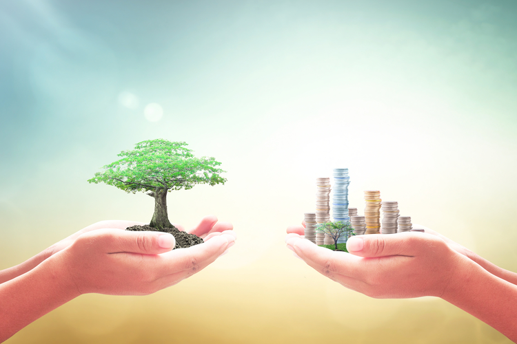 Two hands, one hand holding a tree, the other holding stacks of coins
