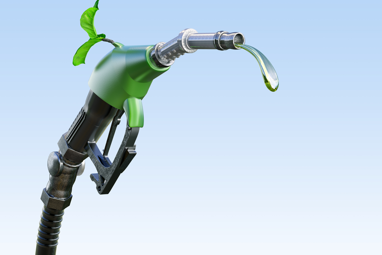 Biofuel Production Not Impacted by Loss of Government Programs