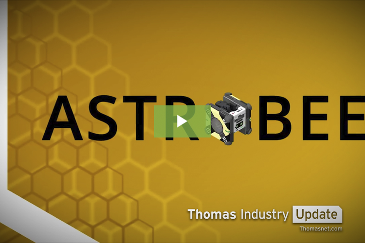 Robotic 'Beeings' Take Over Space Station [VIDEO]