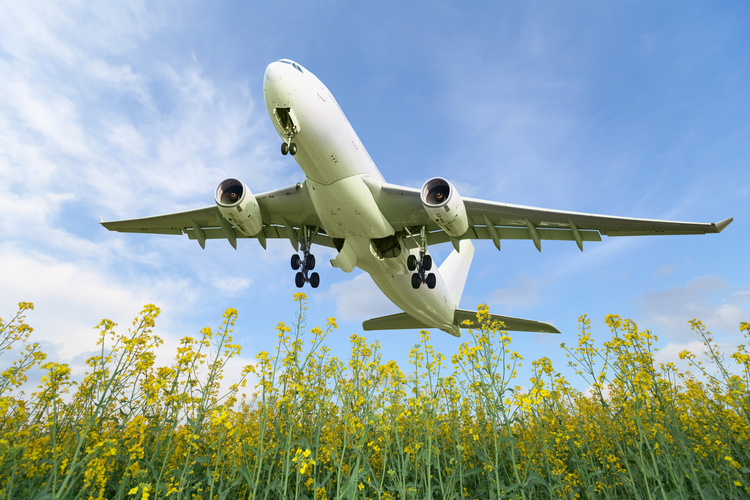 How Can Commercial Airlines Minimize the Environmental Impact of Flying?