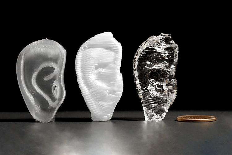 3D printed human ear.