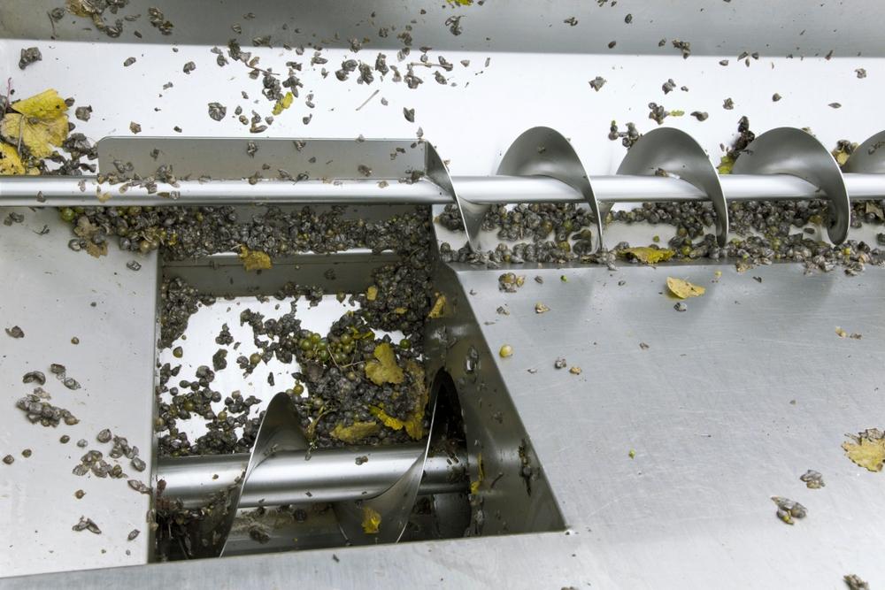 hệ thống băng tải vít băng tải làm việc - Một băng tải vít trong nhà máy rượu đẩy nho đến báo chí.