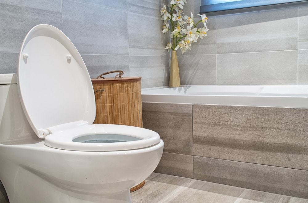 Top Toilet Manufacturers And Companies In The Usa