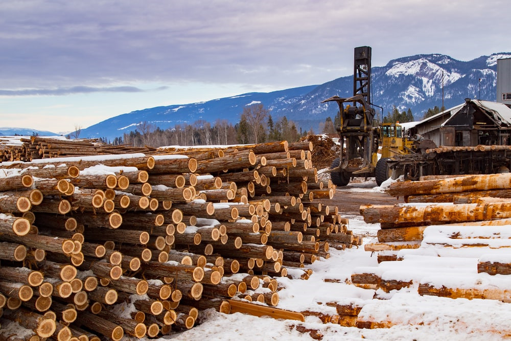 Top Lumber Companies And Suppliers In The U S