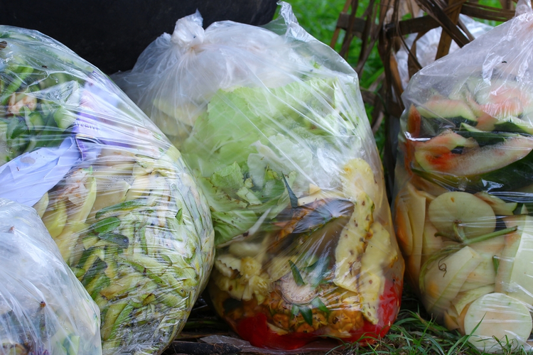 Dealing With Food Waste in the Supply Chain