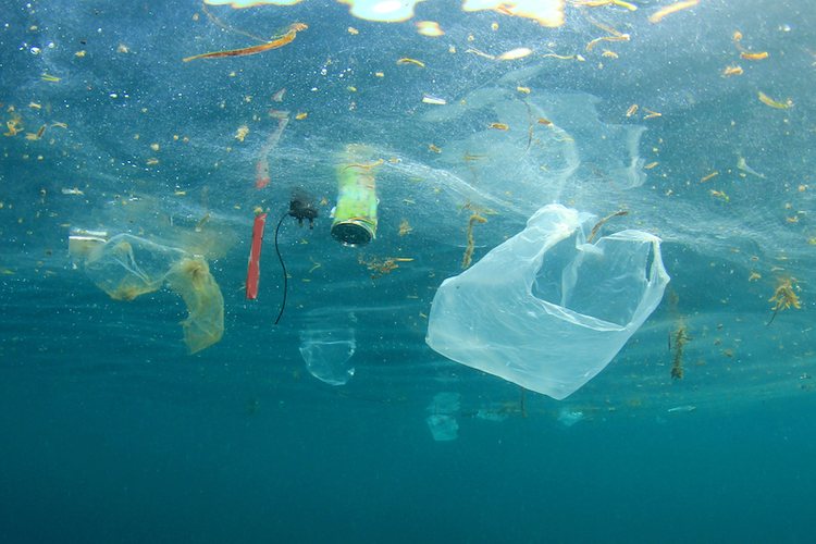 HP and Ikea Join NextWave to Reduce Plastic Waste in Oceans