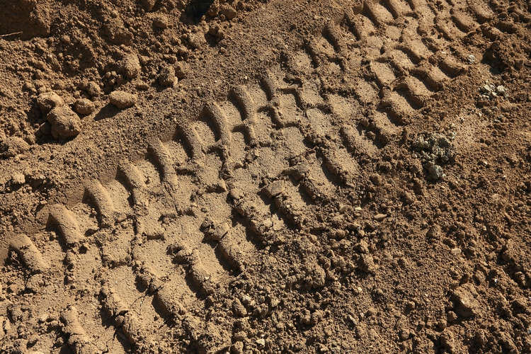 Tire tracks on dirt road.