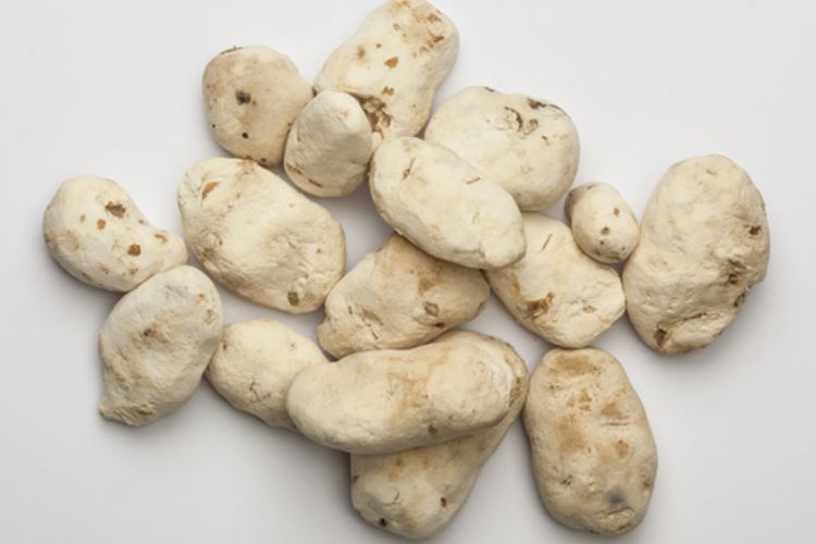 Chuños, naturally freeze-dried potatoes