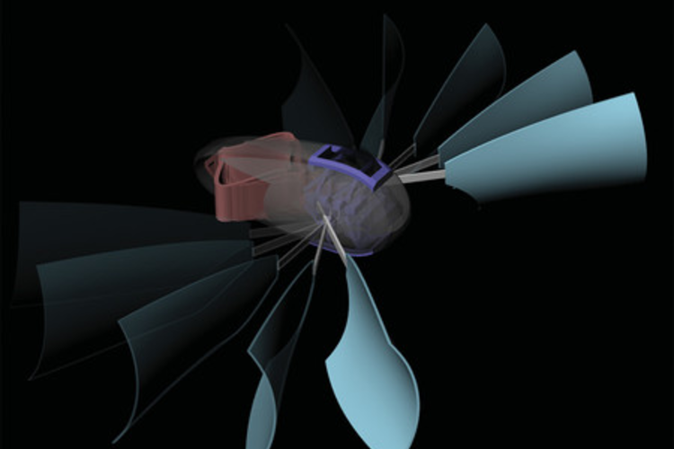 Artist rendering of the aquatic robot by Caltech and ETC Zurich.