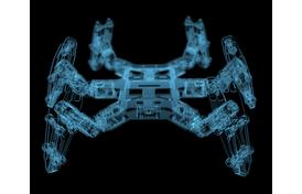 Robotic Designs Come Naturally