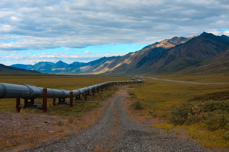 A Closer Look at Drilling the ANWR