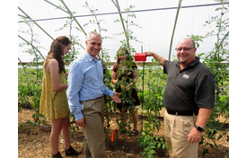 Internet of Tomatoes Teaches Students Smart Farming